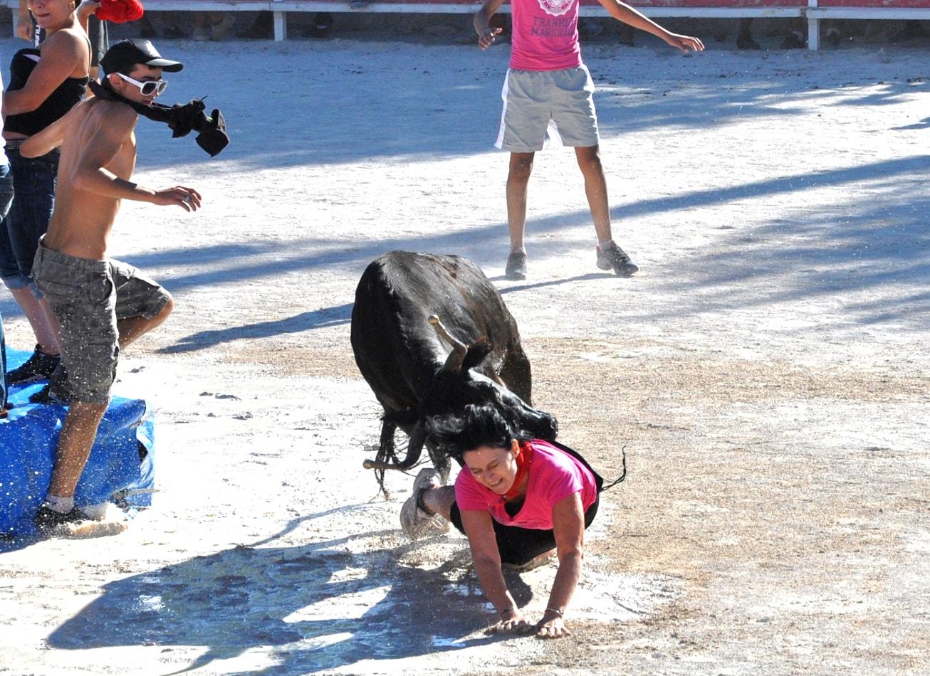 toro piscine taureau jeux vachette arene corrida montpellier activites
