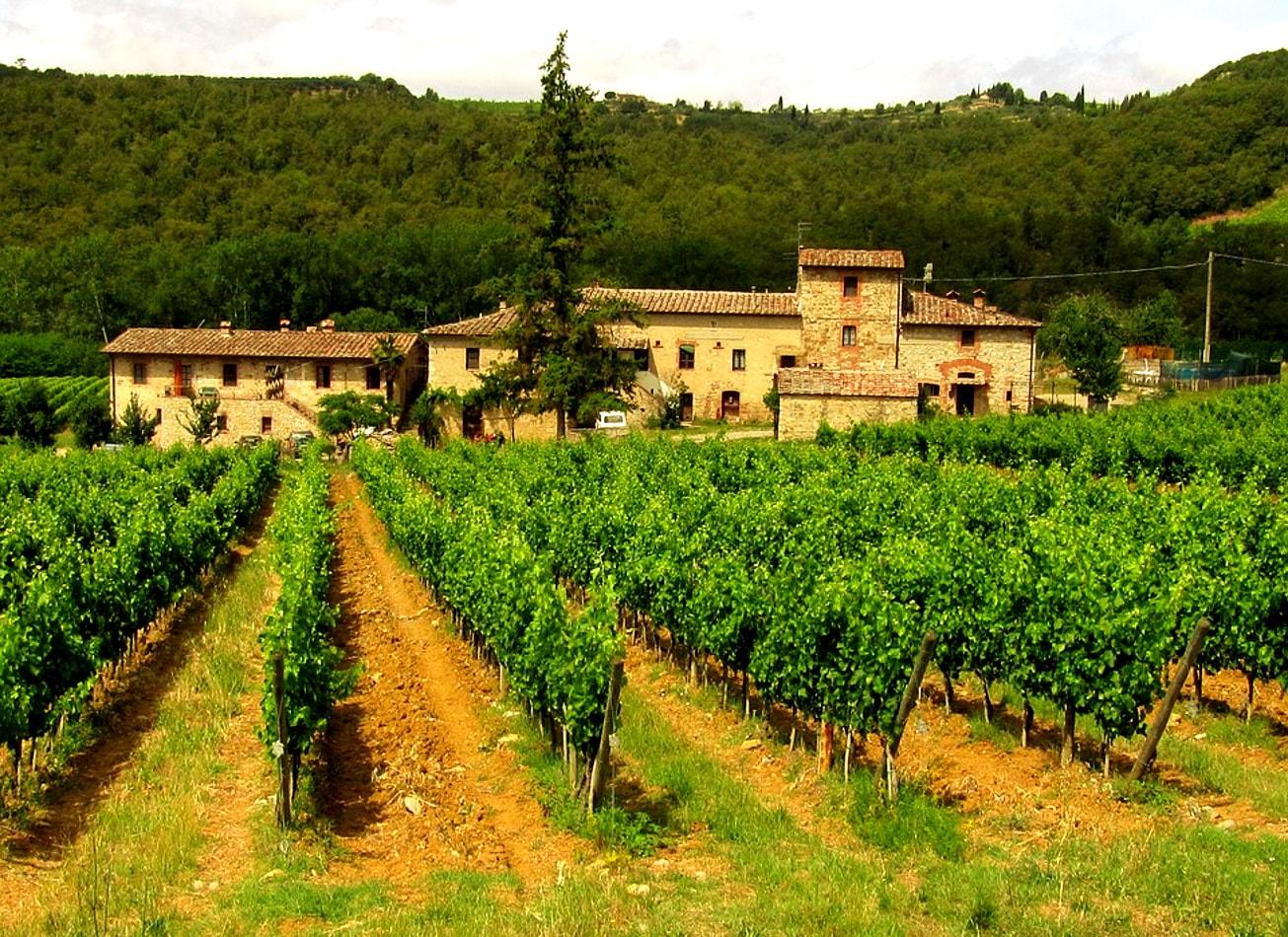 dégustation de vin italien vin vigne huile olive rome activites vimigo