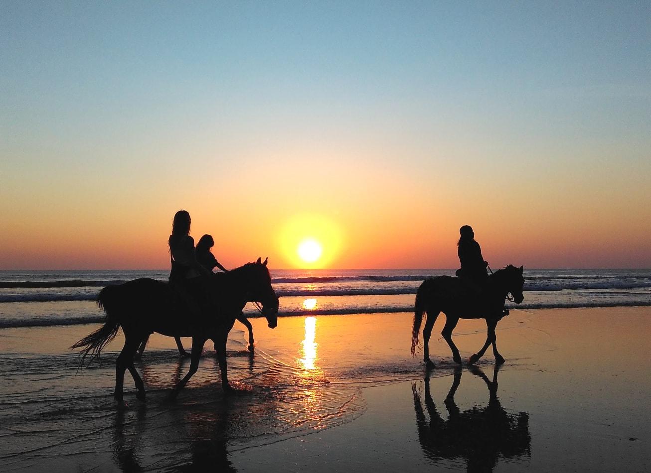 balade à cheval plage promenade deauville vimigo activites
