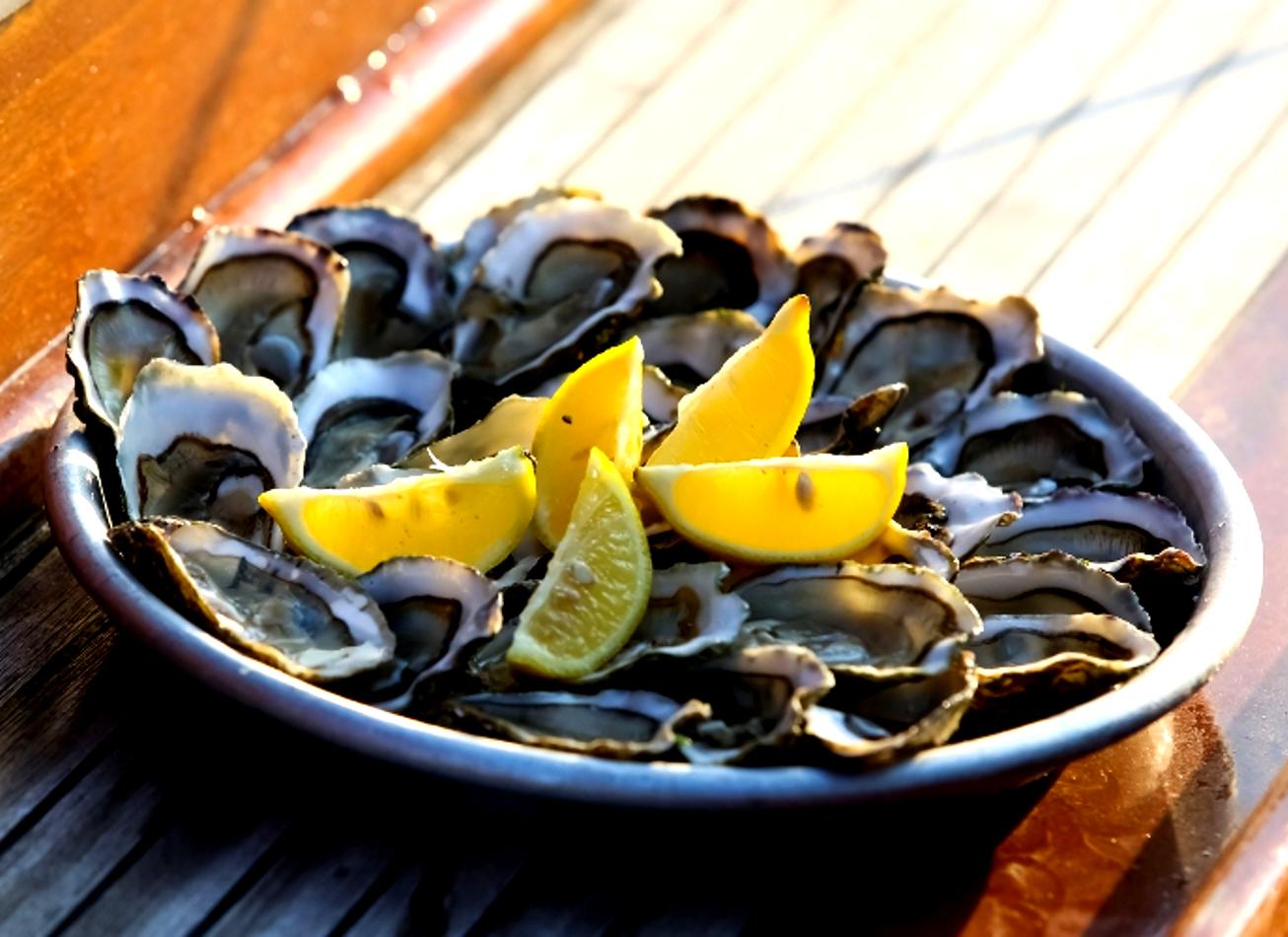 croisière en pinasse avec dégustation d'huîtres arcachon activites vimigo