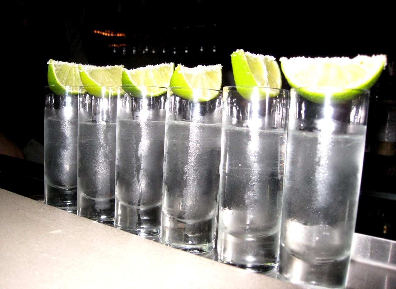 dégustation de vodka cracovie activites vimigo