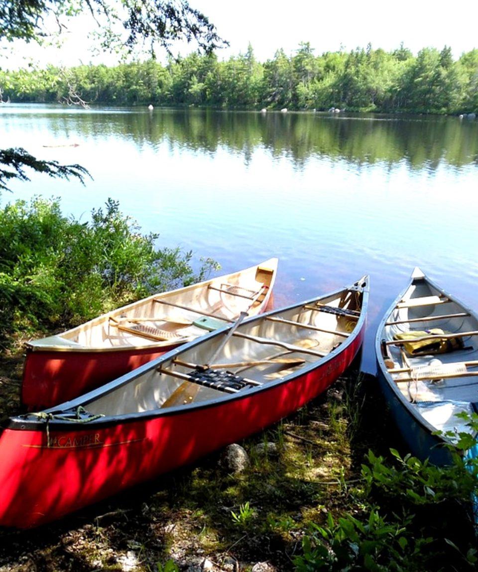 canoë kayak strasbourg fleuve activites vimigo